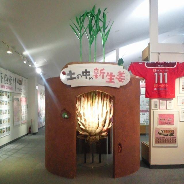 iwashita-ne170325.jpg
